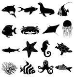 Iconos de Sealife fijados Foto de archivo libre de regalías