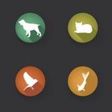 Iconos del animal doméstico fijados Símbolos del veterinario acaricia silho del icono Imagen de archivo