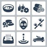 Iconos del balneario del vector fijados