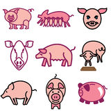 Iconos del cerdo y del tocino Foto de archivo