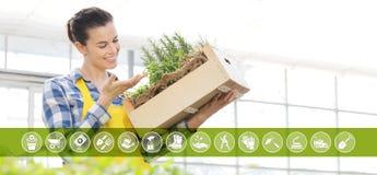 Iconos del comercio electrónico del equipo que cultiva un huerto, mujer sonriente con la caja de madera por completo de hierbas d stock de ilustración