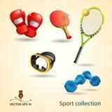 Iconos del deporte. Conjunto del vector Fotografía de archivo libre de regalías