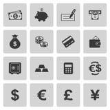 Iconos del dinero fijados Fotografía de archivo libre de regalías