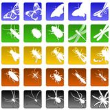 Iconos del insecto Fotografía de archivo