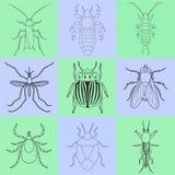 Iconos del insecto fijados Manipule y haga tictac, apeste el insecto y grillo, mosca y piojo, escarabajo de la patata y mosquito, Fotografía de archivo libre de regalías