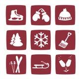 Iconos del invierno y de la nieve fijados Fotografía de archivo