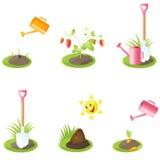 Iconos del jardín Imagen de archivo libre de regalías