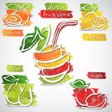 Iconos del jugo de fruta Fotografía de archivo