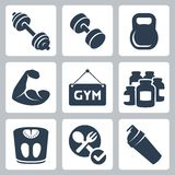 Iconos del levantamiento de pesas/de la aptitud del vector fijados Fotografía de archivo libre de regalías