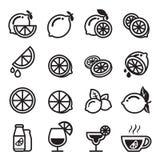 Iconos del limón Fotografía de archivo libre de regalías
