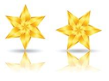 Iconos del logotipo de la estrella libre illustration