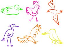 Iconos del pájaro Foto de archivo libre de regalías