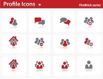 Iconos del perfil fijados - serie del Firebrick Imagen de archivo