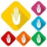 Iconos del símbolo del maíz fijados con la sombra larga Imagen de archivo