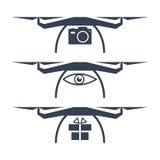 Iconos del vector del abejón Fotos de archivo libres de regalías