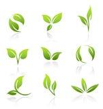 Iconos del vector - hojas del verde Fotos de archivo