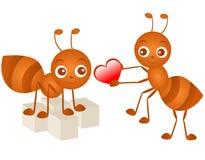 Iconos del vector: Hormiga en amor Imagenes de archivo