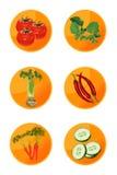 Iconos del Veggie Fotografía de archivo libre de regalías