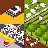 Iconos elegantes del concepto de la granja fijados stock de ilustración