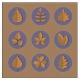 Iconos en la forma de las hojas de otoño Fotografía de archivo libre de regalías