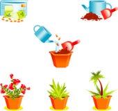 Iconos en las plantas crecientes de la ventana Imagen de archivo