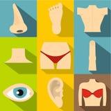 Iconos fijados, estilo plano del cuerpo humano Imágenes de archivo libres de regalías