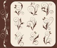 Iconos florales Fotos de archivo