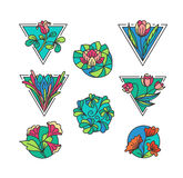 Iconos florales coloridos Imagen de archivo libre de regalías