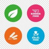 Iconos naturales de la comida Muestras Halal y kosher libre illustration