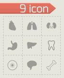 Iconos negros de la anatomía del vector fijados libre illustration