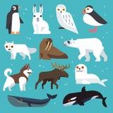 Iconos planos de los animales polares stock de ilustración