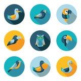 Iconos planos de los pájaros Fotografía de archivo