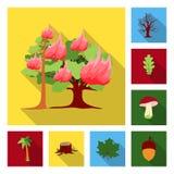 Iconos planos del bosque y de la naturaleza en la colección del sistema para el diseño Ejemplo del web de la acción del símbolo d Fotografía de archivo libre de regalías