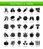 Iconos planos del vector con las verduras y las hierbas Forma de vida sana ilustración del vector