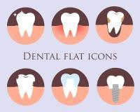 Iconos planos dentales del vector Fotografía de archivo