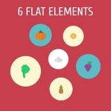 Iconos planos fruta cítrica, piña, cebolla y otros elementos del vector El sistema de símbolos planos de los iconos del postre ta Imagen de archivo libre de regalías