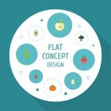 Iconos planos nabo, rábano, Bean And Other Vector Elements El sistema de símbolos planos de los iconos de la fruta también incluy ilustración del vector