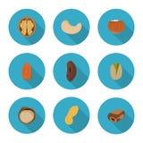 Iconos planos nuts Fotos de archivo