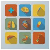 Iconos planos retros de la salud y del órgano fijados Fotografía de archivo libre de regalías