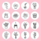 Iconos preciosos de plantas en potes stock de ilustración