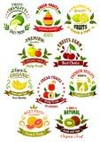 Iconos retros de las frutas frescas para el diseño de la agricultura Imagen de archivo libre de regalías