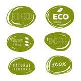 Iconos sanos de la comida, etiquetas Etiquetas orgánicas Elemen del producto natural Imágenes de archivo libres de regalías