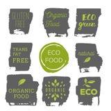 Iconos sanos de la comida, etiquetas Etiquetas orgánicas Elemen del producto natural Fotos de archivo libres de regalías