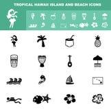Iconos tropicales de la isla y de la playa de Hawaii Fotos de archivo