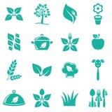 Iconos vegetarianos de la comida Imagen de archivo