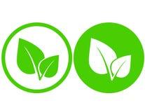 Iconos verdes de la hoja Foto de archivo libre de regalías