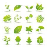Iconos verdes de la hoja fijados stock de ilustración
