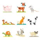 Iconos veterinarios de la medicina animal de la atención sanitaria del animal doméstico Fotografía de archivo libre de regalías