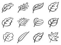 Leaves icon set. Calligraphy style. stock illustration