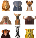 Icons of african animals Stock Images